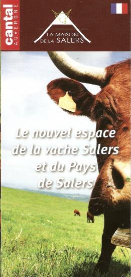 Salers 1